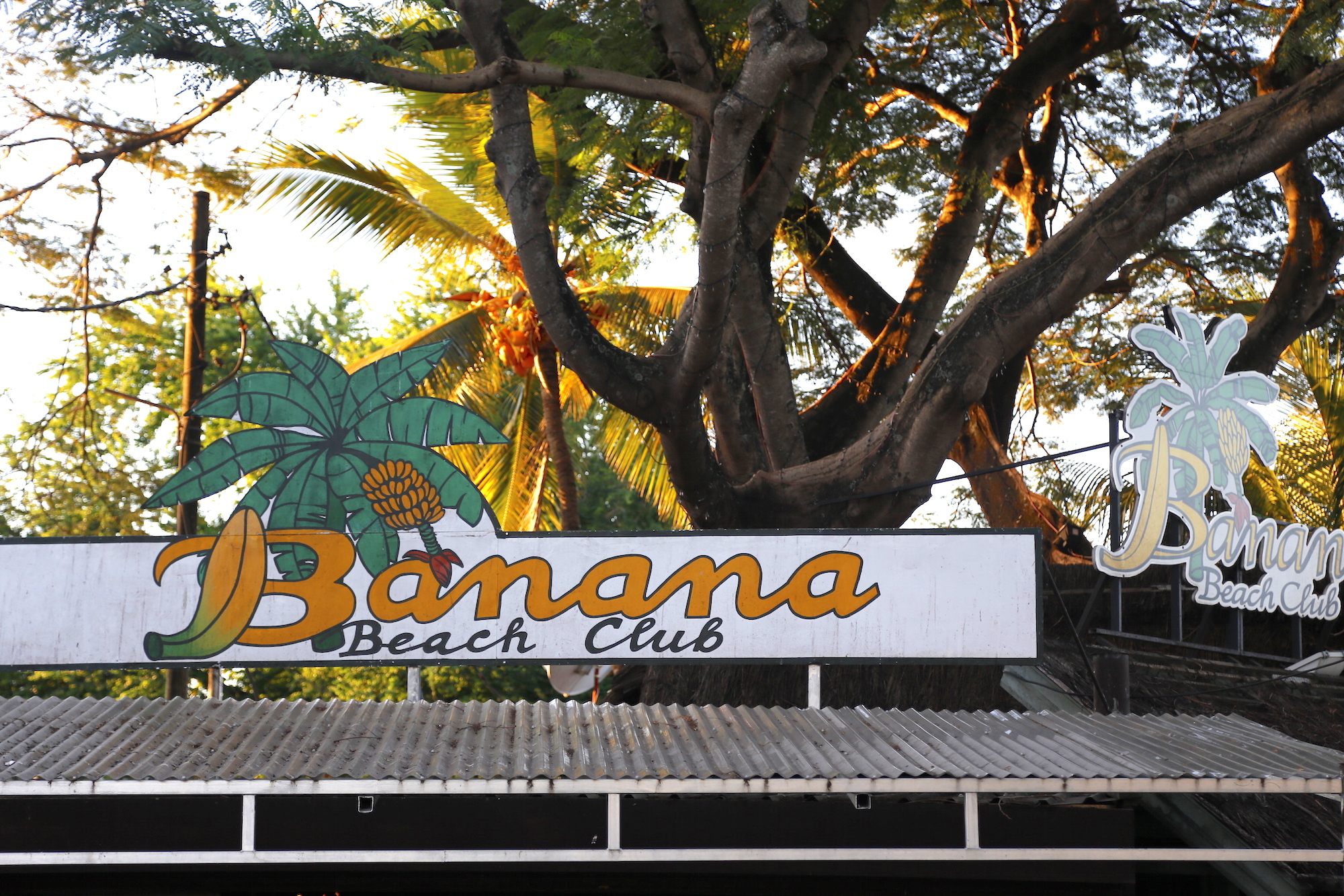banana_beachclub